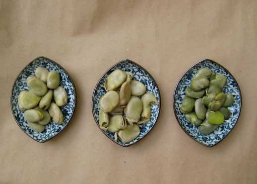 shelled & unshelled cooked fava beans, Persian style! (Baghali) |Figandquince.com (Persian Cooking and Culture blog)
