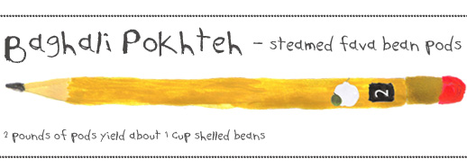 Pencil illustration - header for Bahali Pokhteh (Persian cooked fava beans edamame) recipe | FigandQuince.com (Persian cooking and culture blog)