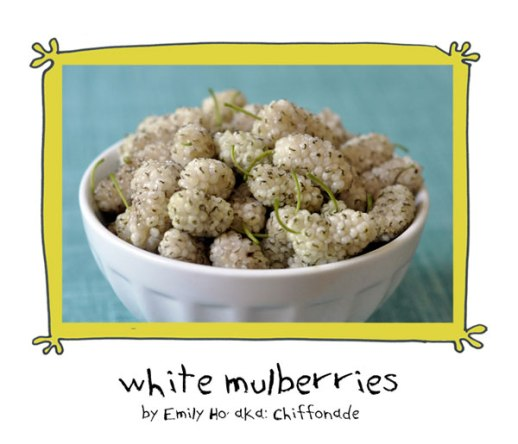 fresh white mulberry fruit pretty in bowl