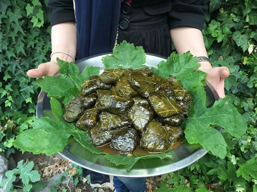 dolmeh Persian stuffed grape leaves recipe tutoial yummy