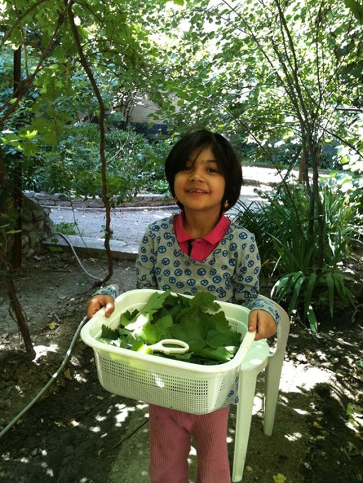 garden yard Persian Iran tehran grape leave little girl