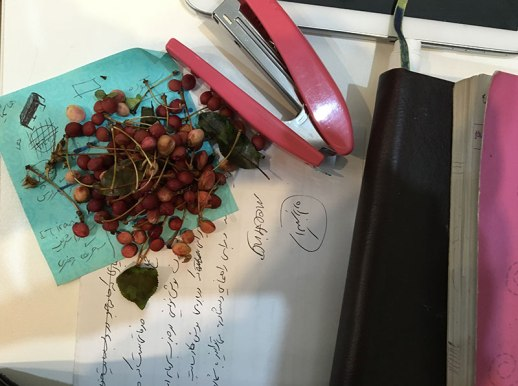 Work still life with notes, cherry pits & stapler
