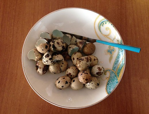 quail eggs on plate with turquoise design | Persian food blog