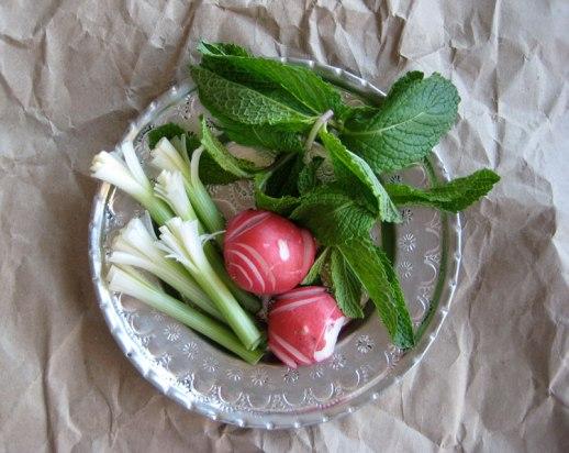 plate of sabzi khordan persian fresh herbs platter: radishes (torobche) fresh mint (na'na) & piyazche (spring onions)