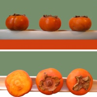 It's a Khorma. It's an Aloo.  It's:  Khormaloo!  Or:  How to Eat a Persimmon