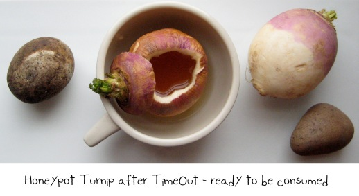 56turnip-navet-honey-cold-cure-homemade-natural-remedy-honeypot-ancient-Persian-food-cooking-recipes-fig-and-quince