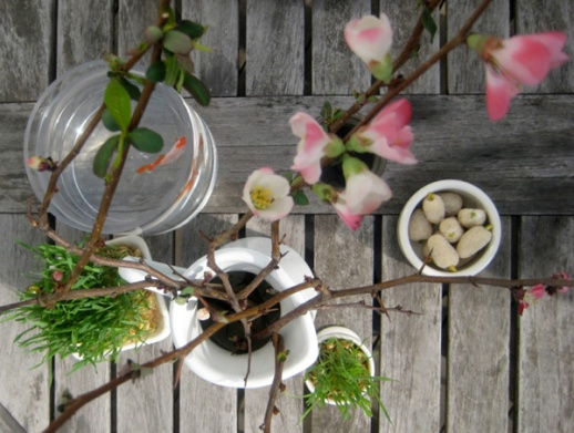 Spring Still Life with Norooz Haft Seen Elements (toot, sabzeh, goldfish) & blossom