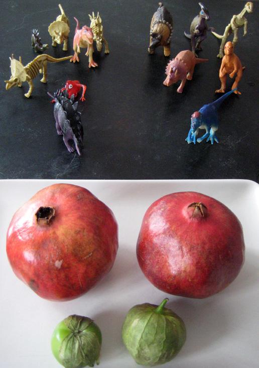 dinosaurs-pomegranates-anar-tomatillo