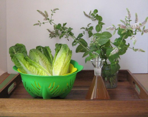 lettuce vinegar fresh mint ingredients for Sharbat 'e sekanjabin