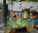 sharbat sekanjabin little boy watermelon yard figs peonies fresh mint flowers outdoor still life pretty Persian food blog