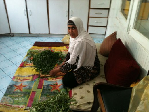 Lady cook seated on floor chopping fresh herbs to prepare meal Kabul Afghanistan photo by Fig & Quince (Persian food culture blogger)