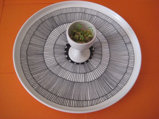 lentil sprouts, egg holder on Michimeko plate orange background | @figandquince (Persian food culture blog)