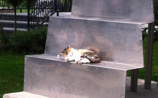 Cute Persian cat napping on sculpture in Bagh e Mouzeh ye honar (Iranian Art Museum Garden) in Tehran, Iran