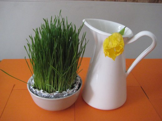 Wheatgrass and yellow tulip still life | @Figandquince (Persian food culture blog)