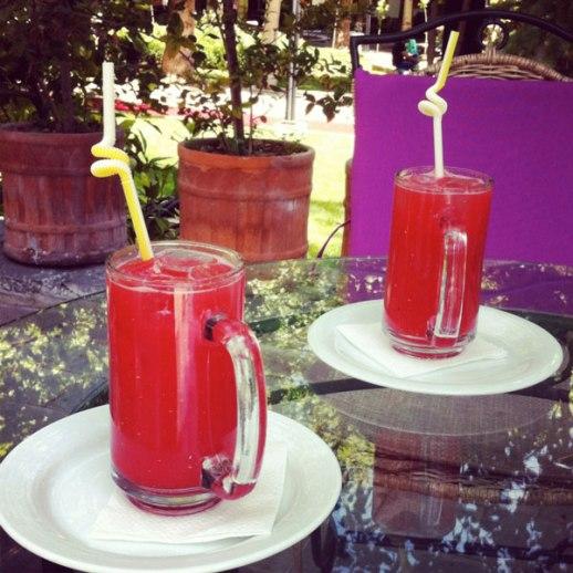 watermelon juice ob hendooneh cafe tehran garden museum
