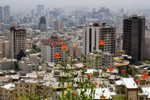 Tehran Iran poppies urban landscape building highrise city image posted by Fig & Quince (Iranian food culture blog)