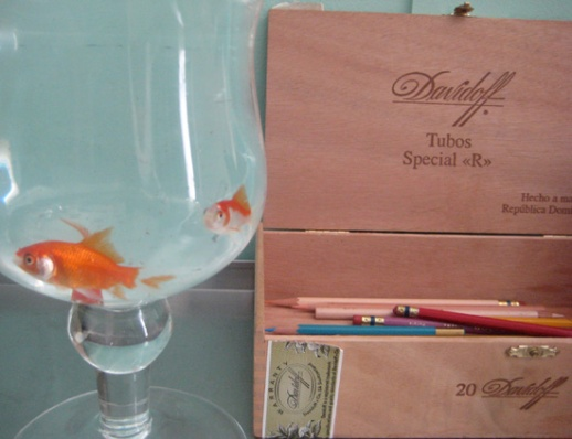 Norooz goldfish, cigar box, color pencils | Pix from Iranian New Year 2012