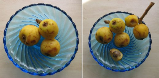Azgil (loquat) fruit in blue glass goblet in Tehran, Iran |@FigandQuince (Persian food culture blog)