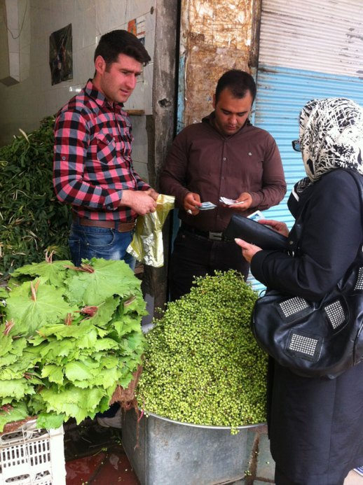 Iranian woman buying vanooshk (wild or mountain pistacio) in Kermanshah bazar in Iran,. Photo from my epic trip to Iran!