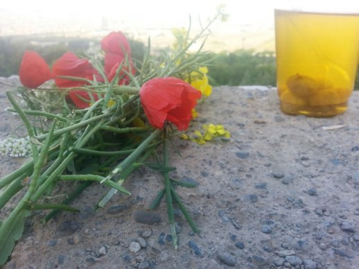 ab 'e aloo (prune water) and poppies buttercup and camomile flowers picked from mountain - Kermanshah, Iran 2014
