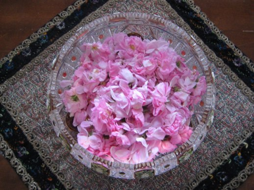 crystal bowl filled w pink Persian rose petals on paisely termeh fabric. Kermanshah, Iran | My Epic Trip to Iran 2014 @figandQuince