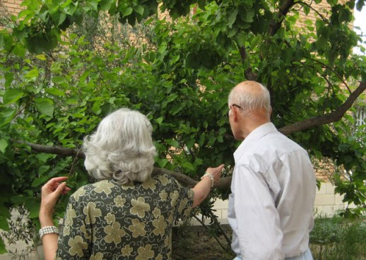 Persian garden and family in Kermanshah, Iran | @FigandQuince (Persian food culture blog)