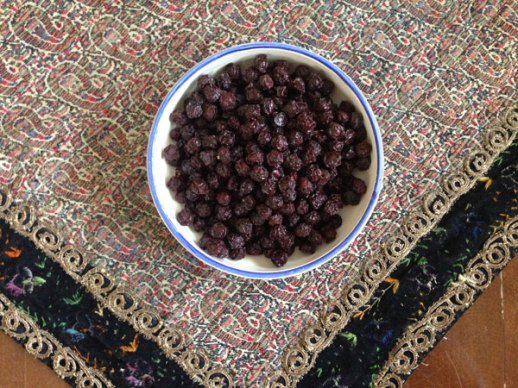 dried sour cherries (albaloo khoshkeh) & termeh | @figandquince (Persian food culture blog)