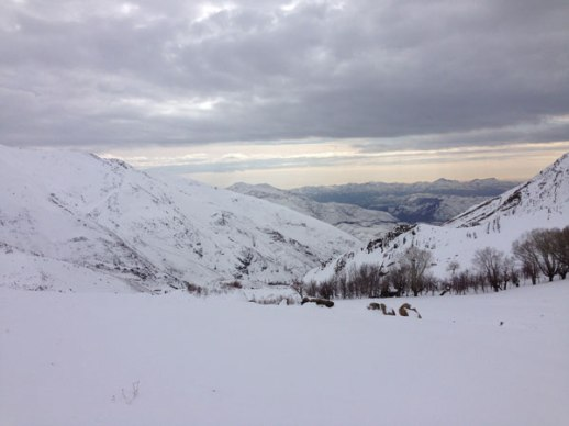 Gorgeous and stark snowy mountain landscape in Lavasan Tehran Iran